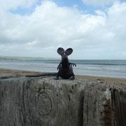 2012 in Irland  Feeeeeriiien mit den lieben von der Wegkreuzung