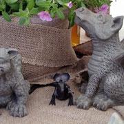 2012 Wellenberg bei den Drachen vom Drachenhändler, nette Kumpels