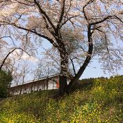 群馬県横川駅