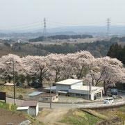妙義神社への道