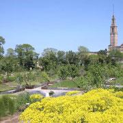 Jardín Botánico de Gijón © Foto Jardín Botánico /  El Sabil. Senda del Oso.