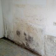 Schimmelpilze an einer Wand