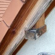 Schimmel an Holz im Außenbereich