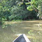 Delta de l'Orenoque VENEZUELA