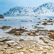 Lofoten Winterlandschaft - Strand