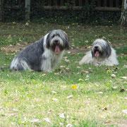 Benny und Lubczyk