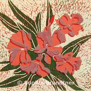 Oleander ede1