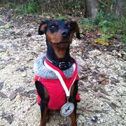 Dali stolz mit Medaille fürs mitmachen
