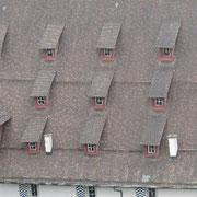 Dach vom Zeughaus