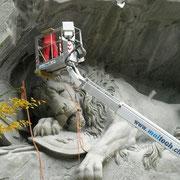 Löwe im Service - Löwendenkmal Luzern