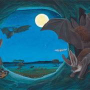 Versteck in der Nacht/Braunes Langohr