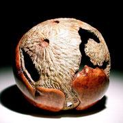 """Terra incognita 001"" loupe d'érable - dia 25 cm - 2005"