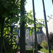 Lycée Jacques-Amyot