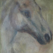 Cavallo2 70X90cm acrylic on canvas sold