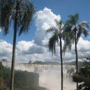 Chutes d'Iguaun côté Argentin