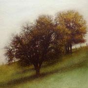 Carré d'arbres - acrylique sur bois - 45x45 cm - 2004 - M.Pavlïn
