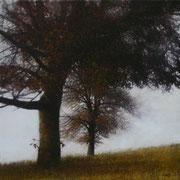 Carré d'arbres - acrylique sur bois - 36,5x36,5 cm - 2006 - M.Pavlïn