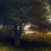 s'étendre - acrylique sur bois - 54x130 cm - 2007 - M.Pavlïn