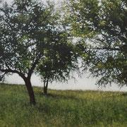le pré - acrylique sur bois - 37x46,5 cm - 2003 - M.Pavlïn