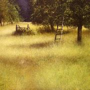 Scala philosophorum - acrylique sur bois - 53,5x61 cm - 2005 - M.Pavlïn