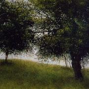 Le pré - acrylique sur bois - 45x31,5 cm - 2003 - M.Pavlïn