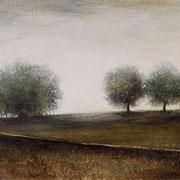Le silence des prés - acrylique sur papier - 27x39,5 cm - 2003 - M.Pavlïn