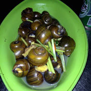 Steamed snails with lemongass and chili