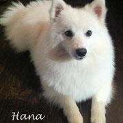 Die Mama - Hana vom Soonwaldblick