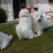 Aiko und Mama - pass doch auf du kleine wilde Nudel! ;-)