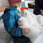 Babies bester Freund Fabi auf Besuch! Das ist ein Riesenfest!