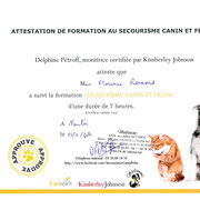 Formation premiers secours animalier