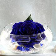 プリザーブドフラワー シーズナルデコレーション サマー