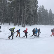 Skitourenworkshop