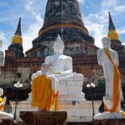 Wat Yai Chai Mongkon Tempel