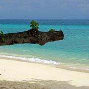 Strand auf Koh Hai