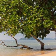 Wunderschöne Strände auf Koh Mak.