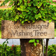 Wishing Tree Resort in Khon Kaen