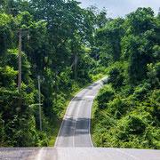 Schöne Straßen führen durch den Park