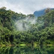 Sattgrüne Natur: Bestaunen Sie die Nationalparks Thailands zur Regenzeit.