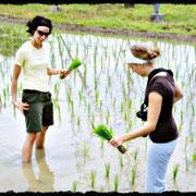 Aktiv werden. Mitmachen! Trekking-Tour Umgebung Chiang Mai