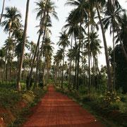 Die Insel ist im Landesinneren wild und unberührt.