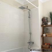 Faïence et peinture  salle de bains
