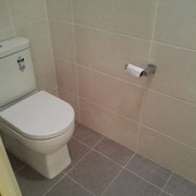 Tempe Toilet Renovation After With Back To Wall Toilet From Harvey Norman