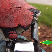 Gefährlicher Abrieb an den Schäkel einer schweren Korbschaukel.