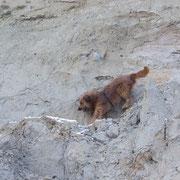 Bergsteiger Iwo