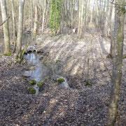 la source de la Conge entre Epoye et Beine