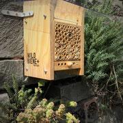 Die Wildbienen schuften
