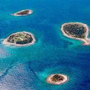 les iles Brioni...excursions au depart de la Riva à Pula