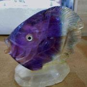 フローライトの熱帯魚?