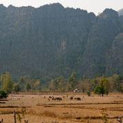 Bolikhamsai grenz an Vietnam